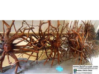 Root Wood Carvings