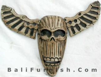 Skulls and Skeletons