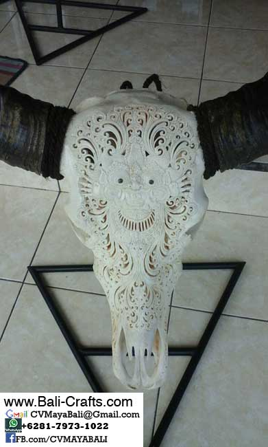 bhc-8-carved-buffalo-skull-bone-bull-heads-from-bali-indonesia